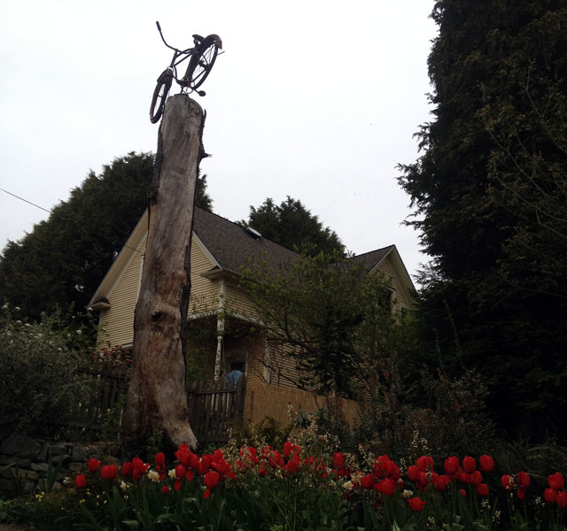 Bike tree and tulips