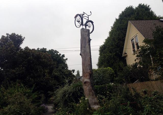 Densmore bike tree
