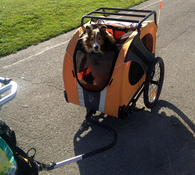 DoggieRide trailer
