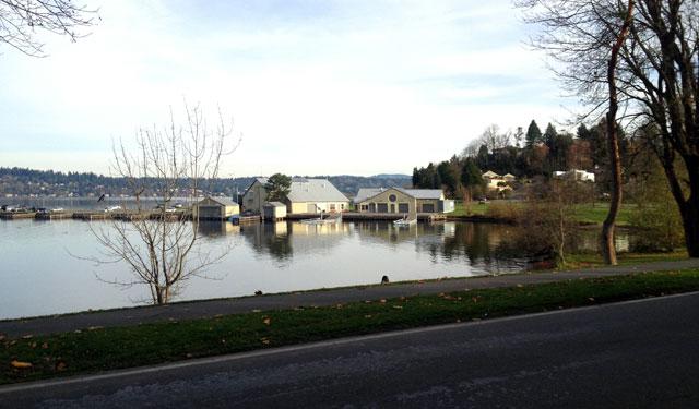 View from the Lake Washington Loop