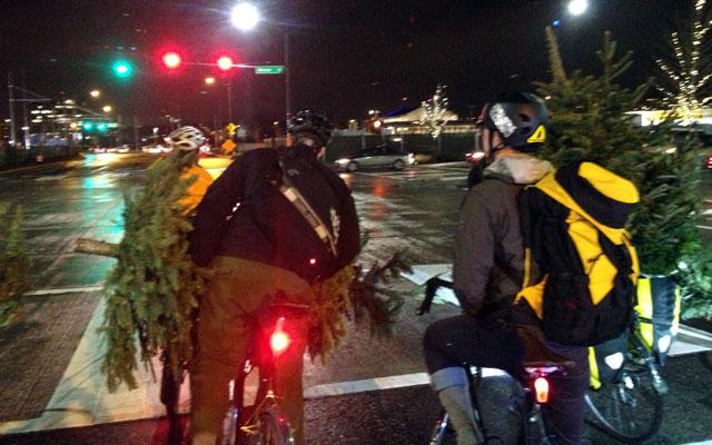 Trees on bikes