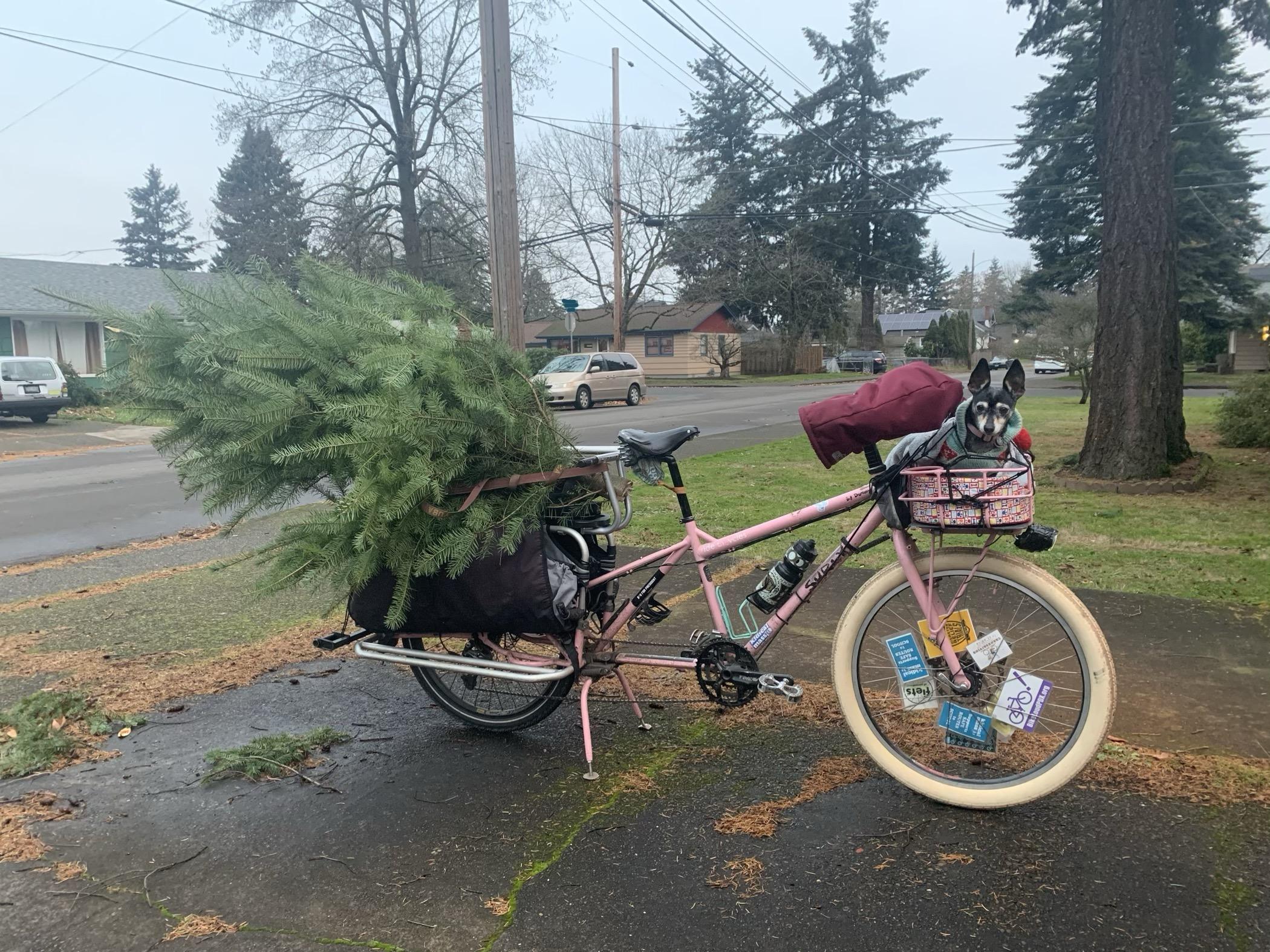 2020tree-bike